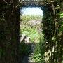 Into the Hidden garden