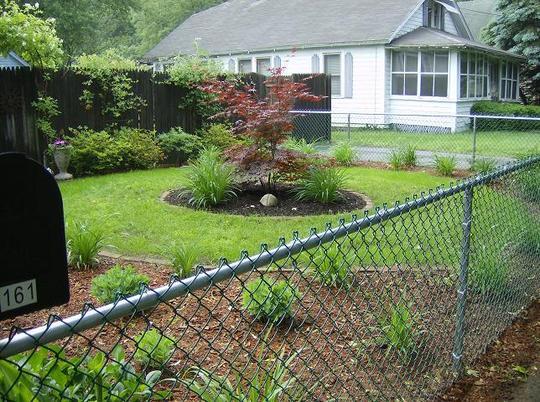 Front garden 2007
