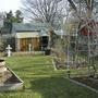 Back Garden April 2008