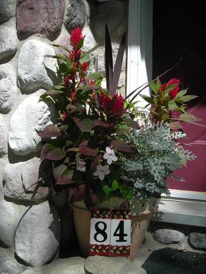 Front door pot