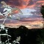 Autumn_sunset_004