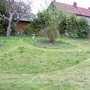 Long Grass....