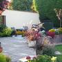 A garden view across the patio