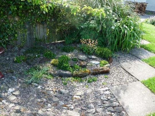 Mini rock garden small rock garden qtiny digging dakota Small rock garden