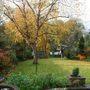 Autumn_colours_in_the_garden.jpg
