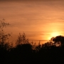 Sun_setting_over_Bedfont_Lakes_2.jpg