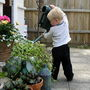 My grandson Dylan a gardener in the making.