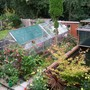 Garden_and_greenhouse_007