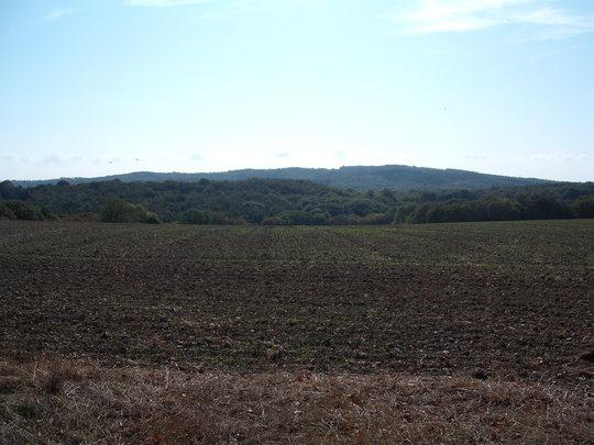 Looking towards Senlac Hill