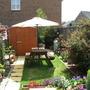 Garden this summer