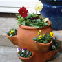 Strawberry pot...
