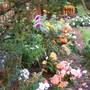 October_2009_052