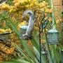 Squirrel pinching seed