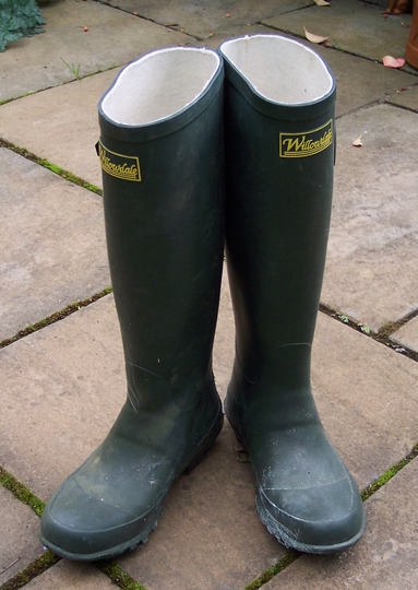 Wellies to match the clogs