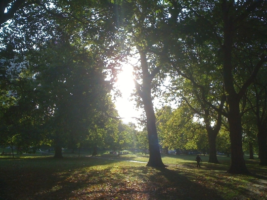 Sunriseand_shadows__2_Hyde_Park_121009.jpg