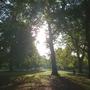 Sunriseand_shadows_2_hyde_park_121009