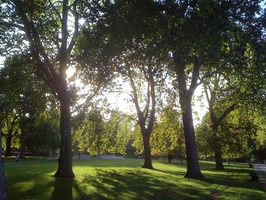 Sunriseand_shadows_3__Hyde_Park_121009.jpg