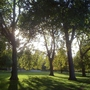 Sunriseand_shadows_3_hyde_park_121009