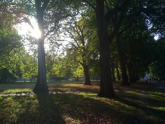 Sunriseand_shadows_4__Hyde_Park_121009.jpg