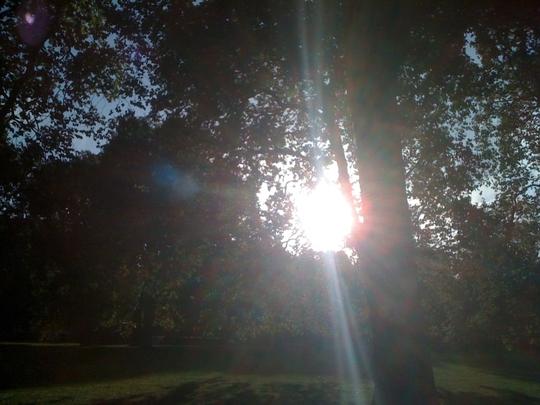 Sunrise_Hyde_Park_121009.jpg