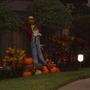 Scarecrow and pumpkins in a neighborhood garden.