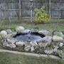 Pond_project_06
