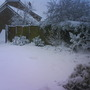 Snow in our garden, pretty!