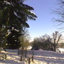 Batsford Arboretum-Feb '09