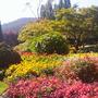 Butchart Gardens - Vancouver Island-Sept.'07