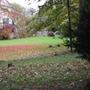 024.jpg  Autumn
