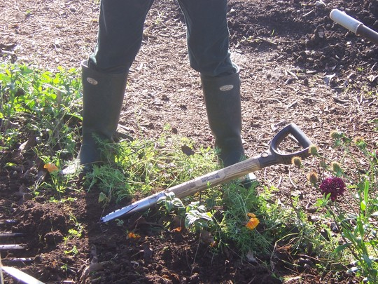 What do Garden Organic Gardeners wear on their feet?
