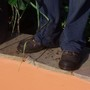 What do Garden Organic Gardeners wear on their feet?(3)