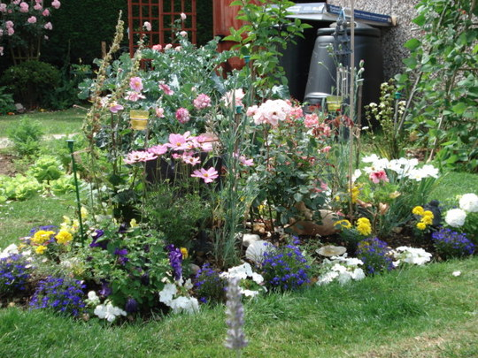 Keeley's Garden