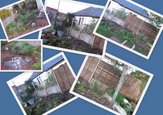 Garden Border and Gravel Collage