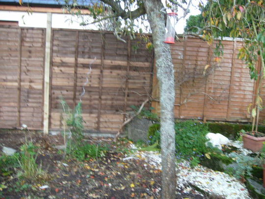 New fence begins...