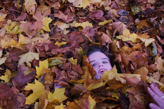 whos hiding in the leaves?