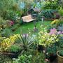 My_garden_in_october_001