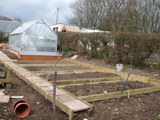 Vegetable Plot (in progress) - upwards