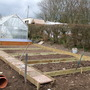 Vegetable Plot (in progress) - upwards