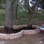 68.Tree_Bed.jpg