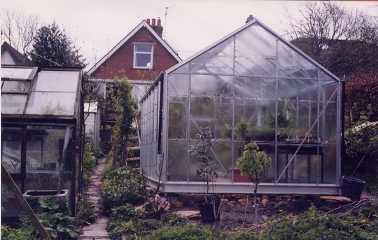 Greenhouses in our tiny garden in England