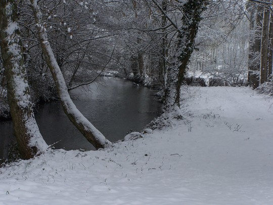 Snow by the River, 2005
