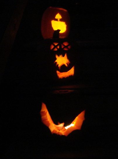 And the rest of the pumpkin patch...