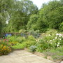 back garden in early summer