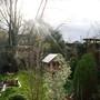 Sunshine_after_storm