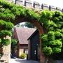 Hatfield House Gardens in July (Wisteria)