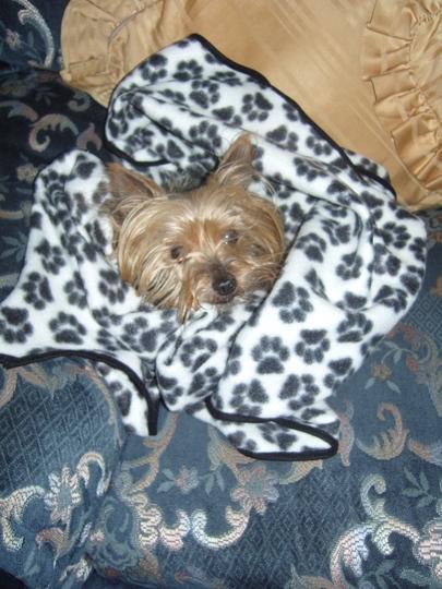 Ella keeping warm.......