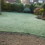 Front garden on a very frosty morning