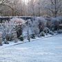 Frosty Morning - No Washing Today