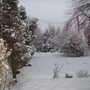 february_2009__6_.jpg